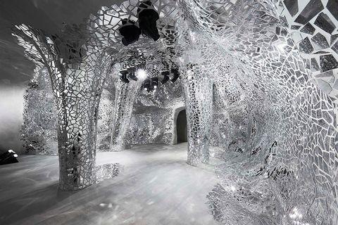 White, Black, Black-and-white, Monochrome photography, Monochrome, Tree, Architecture, Freezing, Photography, Winter,