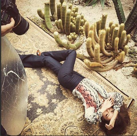Human leg, Shoe, Wrist, Knee, Terrestrial plant, Glove, Thigh, Cactus, Boot, Foot,