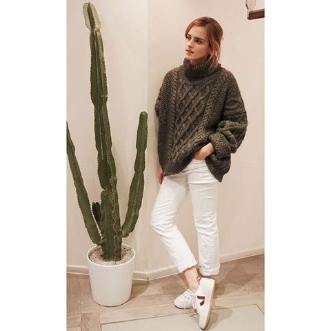 Cactus, Clothing, Green, Houseplant, Plant, Jeans, Sportswear, Trousers, Outerwear, Flower,