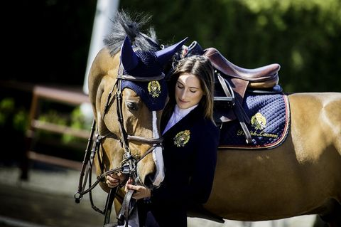 Horse supplies, Bridle, Halter, Horse, Horse tack, Rein, Working animal, Cool, Liver, Sorrel,