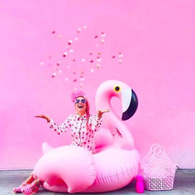 Pink, Toy, Magenta, Beak, Ducks, geese and swans, Water bird, Waterfowl, Bird, Livestock, Duck,
