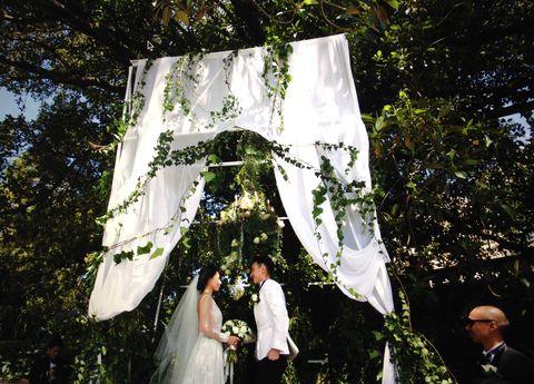 Photograph, Dress, Coat, Bridal clothing, Suit, Bridal veil, Bride, Wedding dress, Ceremony, Veil,