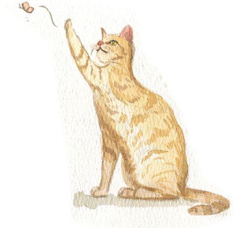 Cat, Small to medium-sized cats, Felidae, Tabby cat, Carnivore, Whiskers, Tail, Illustration, European shorthair, Ocicat,