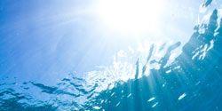 Fluid, Organism, Underwater, World, Aqua, Underwater diving, Marine biology, Extreme sport, Adventure, Diving mask,