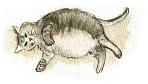 Drawing, Sketch, Working animal, Tail, Illustration, Art, Artwork, Fictional character,