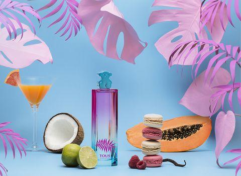 Still life, Illustration, Drink, Plant, Graphic design, Fruit, Food, Grapefruit, Clip art,