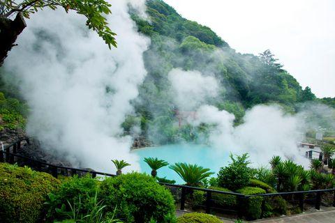 Vegetation, Nature, Plant, Hill station, Smoke, Shrub, Steam, Tropics, Fog, Plantation,