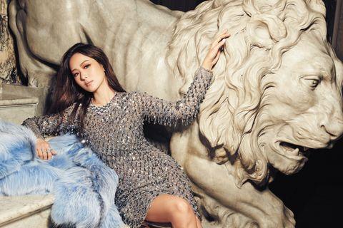 Lion, Human, Big cats, Sculpture, Jaw, Felidae, Carnivore, Art, Carving, Fur,