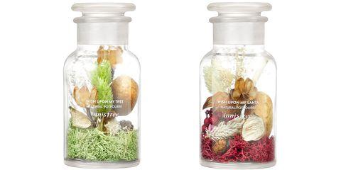 Product, Grass, Organism, Bottle, Plant, Glass, Glass bottle, Water bottle, Mason jar, Nepenthes,