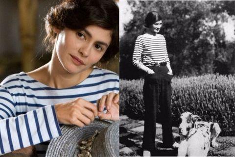 Companion dog, Photography, Black-and-white, Smile, Canidae, Photo shoot,