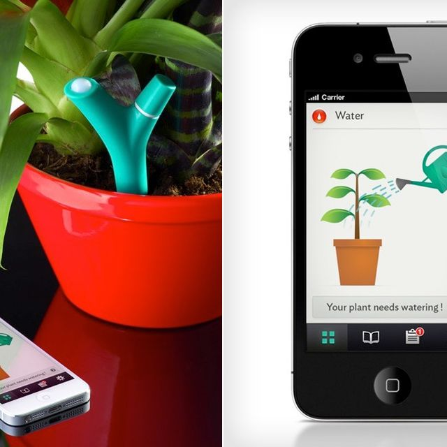 parrot-flower-power-app-stake-gear-patrol-full