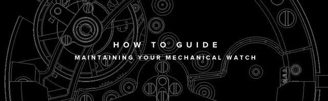 mechanical watch maintenance guide