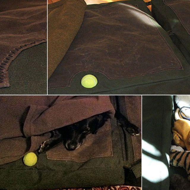 Dog-Bed-Tested-Gear-Patrol-Lead-Full