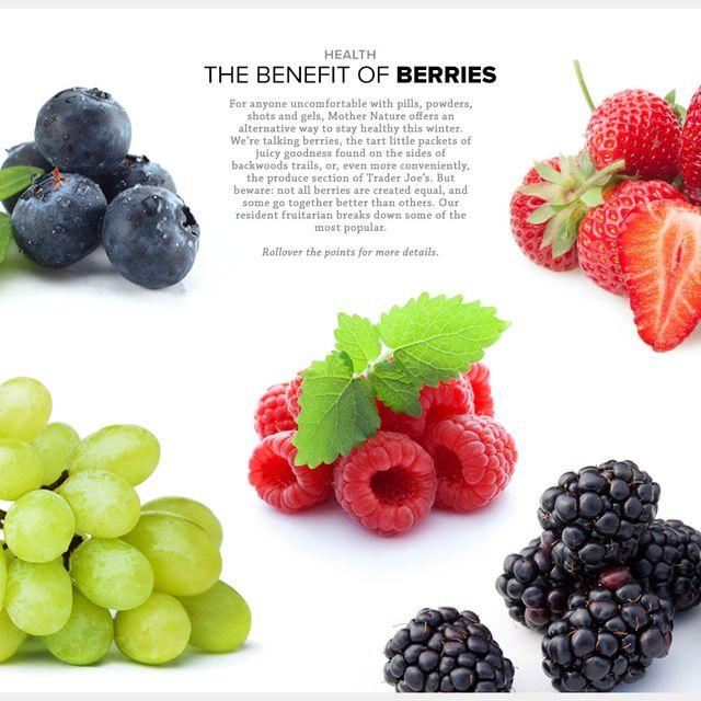 berries-benefits-gear-patrol-lead-full