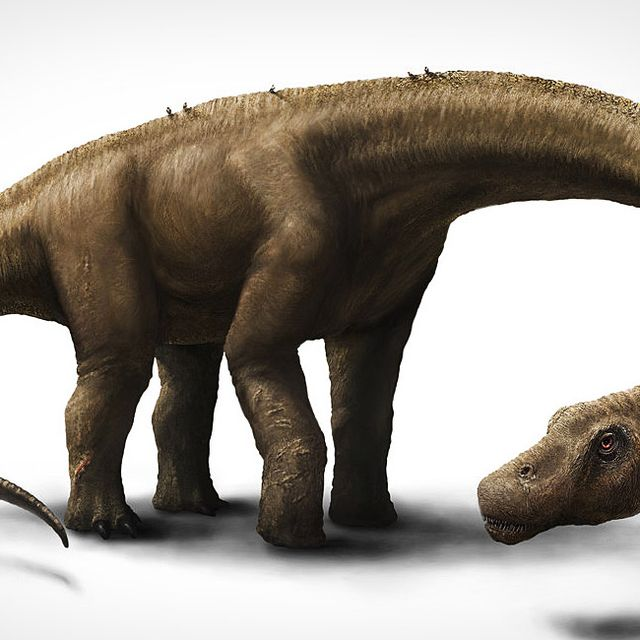 Giant-Dinosaur-Gear-Patrol-Lead-Full