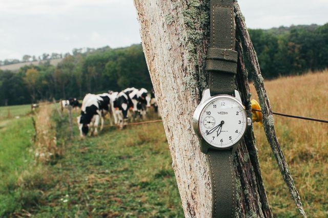 weiss field watch gear patrol ambiance