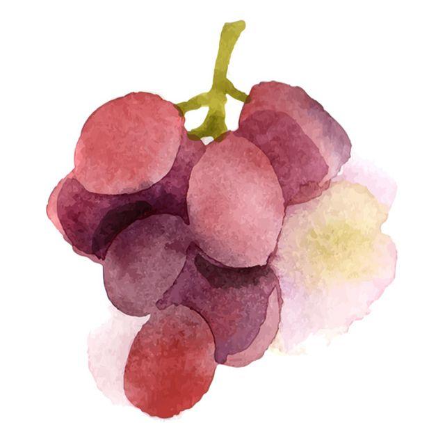The-Almighty-Grape-Gear-Patrol-Lead-Full-