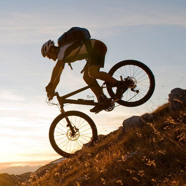 best-mountain-biking-trails-new-zealand-gear-patrol-lead-full-