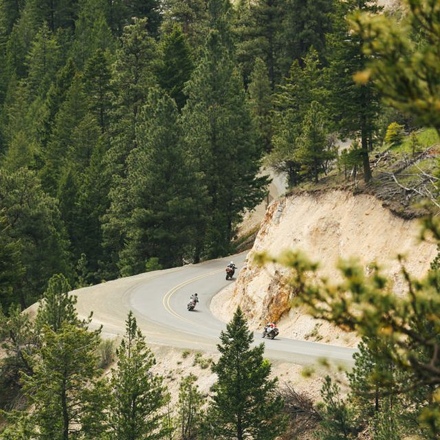 Postcard-Oregon-Curve
