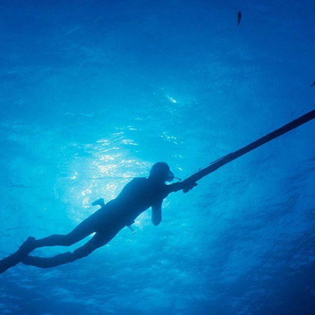 bahama-spear-fishin-gear-patrol-1440