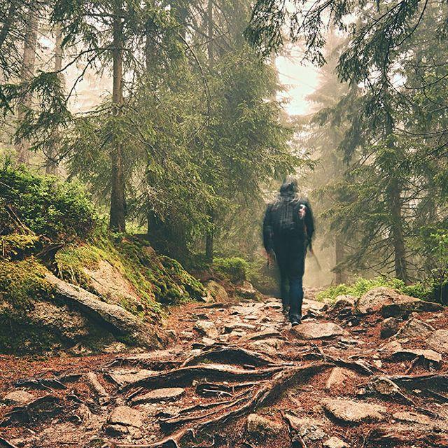best-day-hikes-gear-patrol-full-lead-1440