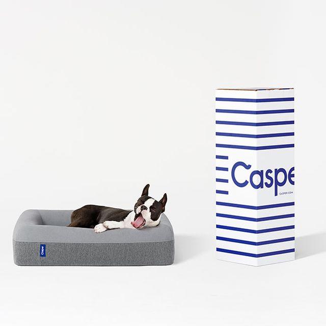 TIG-gear-patrol-casper-dog-bed