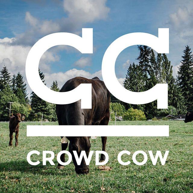 Crowd-Cow-Gear-Patrol-Lead-Full