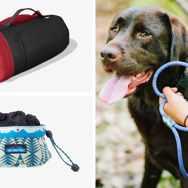 outdoor gear for your dog gear patrol full lead