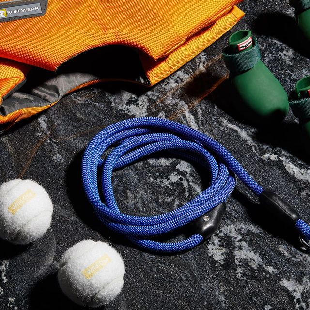 Best-Gifts-For-Dog-Lovers-Gear-Patrol-Lead-Full