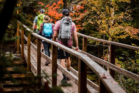 a group of hikers walking across a bridge in fall