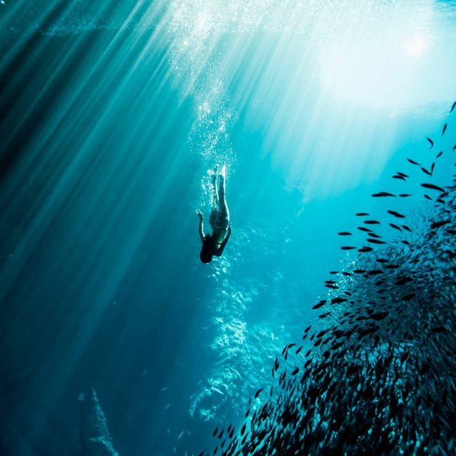 Everything-You-Need-to-Start-Free-Diving-Gear-Patrol-lead-full
