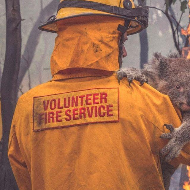 World-Watch-Auction-for-the-Australian-bushfires-gear-patrol-full-lead