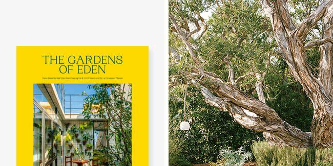 How to Kickstart Your Backyard Garden, According to an Expert
