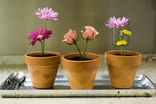 Springy Flower Pot Desserts