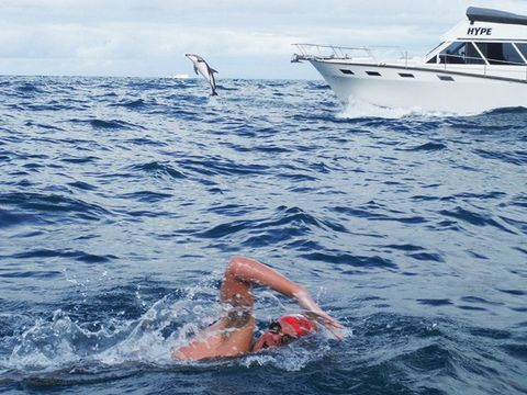 Essential guide to open-water swimming