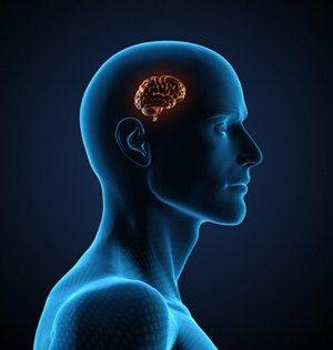 Lip, Chin, Shoulder, Joint, Jaw, Organ, Human anatomy, Animation, Colorfulness, Neck,