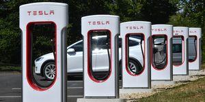 Tesloop's fleet of Teslas has covered more than 2.5 million miles.