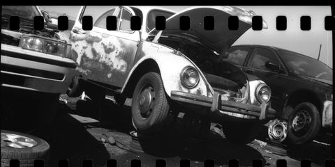 The discarded Colorado Beetle you see here 51 years newer than the camera that shot its photograph.