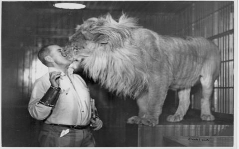 """In addition to cars, Whittell began to amass an animal collection, some brought back with him from African adventures. """"I'm not talking domestic dogs and cats,"""" says Watson. """"I'm talking about a menagerie, which included tigers, a giraffe, an elephant, a bear and so many more."""""""
