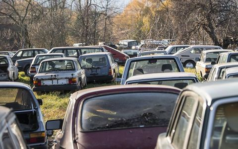 Hundreds of foreign cars sit in the woods.