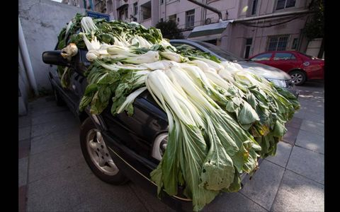 CABBAGE PATCH CAR // Sometimes your car is used to travel from place to place, and other times it's used to dry your cabbage. At least that's the case in Hangzhour, Zhejiant Province of China.