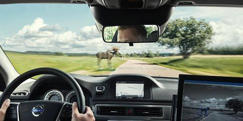 Volvo previews its new animal detection technology