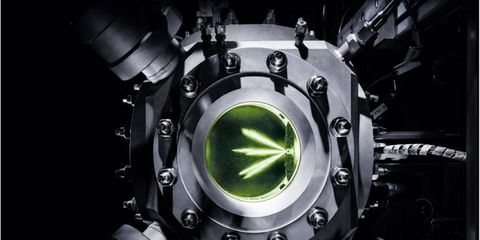 Audi e-fuel replaces gas and diesel with fuel from microorganisms.