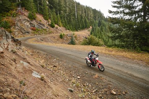 The new Honda CRF450L conquers the rain, mud and even plain old pavement. These are a few of the trails we rode outside of Packwood, Washington, just south of Mount Rainier, the latter which you could see if it wasn't raining.