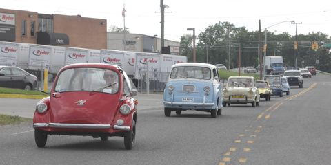 Traffic-stopping cuteness