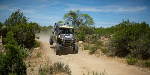 Off-roading, Vegetation, Mode of transport, Vehicle, Dirt road, Transport, Automotive tire, Tire, Off-road vehicle, Grass,