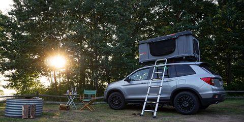 Morning breaks at Lakeport State Park.