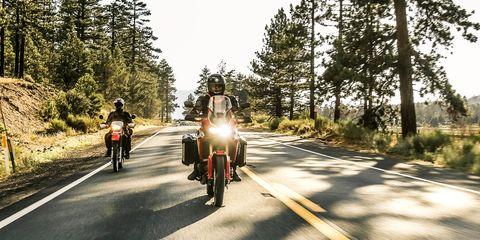 Road, Vehicle, Asphalt, Motorcycle, Mode of transport, Lane, Tree, Transport, Highway, Thoroughfare,