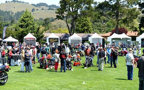 Tree, Community, Crowd, Lawn, Pole, Shade, Tent, Park, Motorcycle, Canopy,