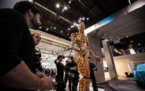 Skeleton, Exhibition, Sculpture, Museum, Anthropology, Rib,